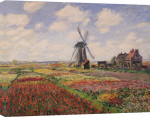 Tulip Fields with the Rijnsburg Windmill, 1886 giclee art print