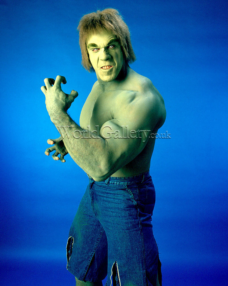 Lou Ferrigno as the In...