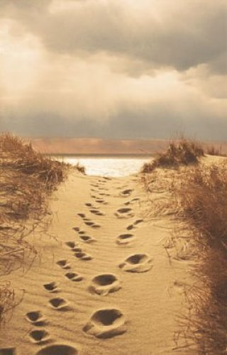 Footprints In The Sand by Jane Vollers Booth