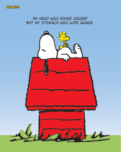Snoopy and Woodstock by Mini Posters