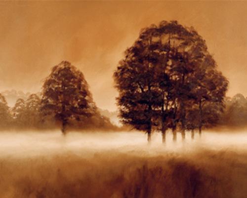 Misty Morning by Alan Parker