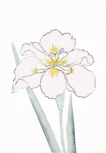 Japanese Irises I IV Japanese Iris III by Modern Editions