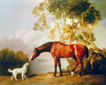 Bay Horse and White Dog art print