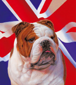 Best of British art print