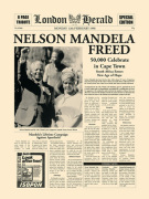 Nelson Mandela Freed art print