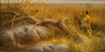 Serengeti Lionesses art print