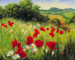 Sunlit Meadow art print