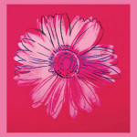 Daisy, c. 1982 (crimson and pink) art print