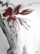 Red Orchid 1 giclee art print