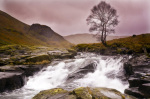 Wilderness Langstrath giclee art print