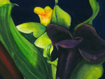 Midnight Lillies Closeup giclee art print