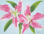 Pink Lily Spray giclee art print