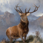 Monarch of the Glen, 1851 giclee art print