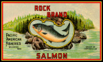 Pacific Salmon giclee art print
