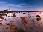 St Mary&#39;s lighthouse, over rocky shoreline giclee art print