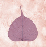 Purple Leaf II giclee art print