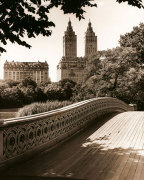 Central Park Bridges 1 giclee art print
