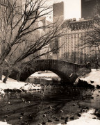Central Park Bridges 4 giclee art print