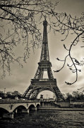 Curves of Eiffel giclee art print