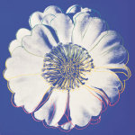 Flower for Tacoma Dome, c. 1982 (blue & white) giclee art print