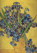 Irises in Vase giclee art print