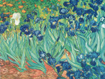 Irises in the Garden giclee art print