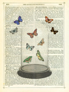 Butterfly Dome giclee art print