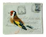 Goldfinch giclee art print