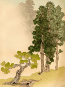 Japanese Conifers and Trees giclee art print