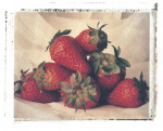 Strawberries giclee art print