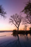 The River Club lodge, sunset on Zambesi River, Zambia giclee art print