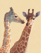 Girafes art print