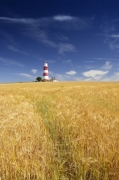 Happisburgh Lighthouse giclee art print
