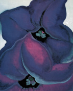 Purple Petunias, 1925 art print