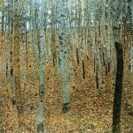 Forest of beeches art print