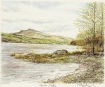 Lake Bala art print