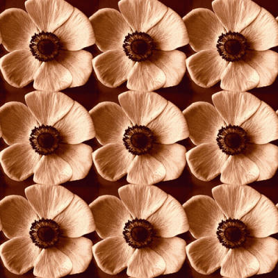 Poppyfield
