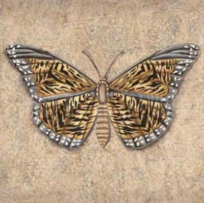 Butterfly tattoo butterfly picture butterfly: Butterfly Tiger-Butterfly