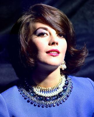 natalie wood by celebrity image art print - worldgallery.co.uk
