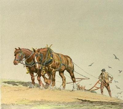 Ploughing - Plate 2 (Restrike Etching)