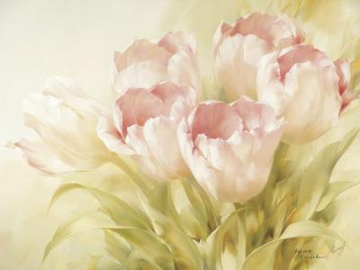 Pink Tulips II